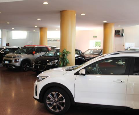 Esposizione Automobili nuove
